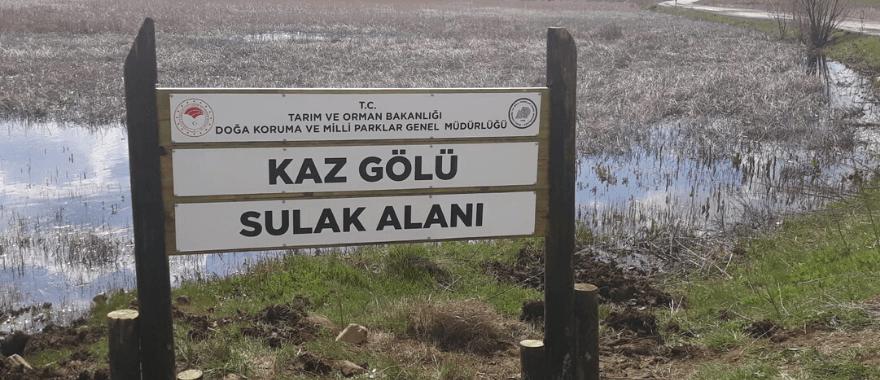 kaz gölü koruma altında , zasiad